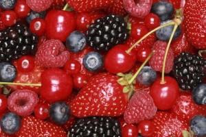 frutti di bosco - owoce leśne