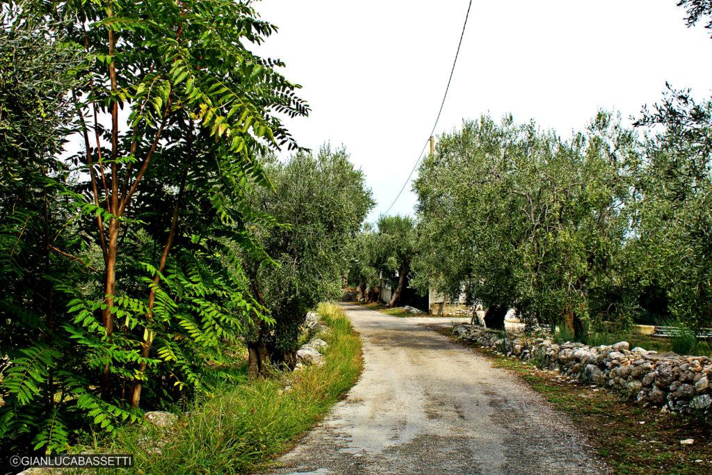 Apulia półwysep Gargano Monte Saraceno trasa trekkingowa