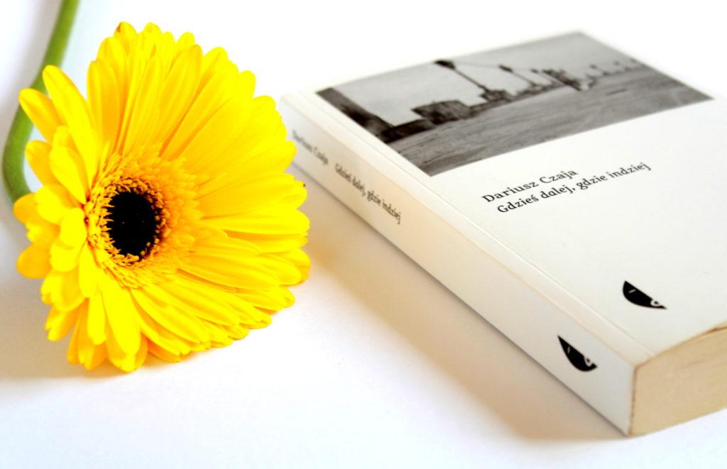 książka o apulii włochy