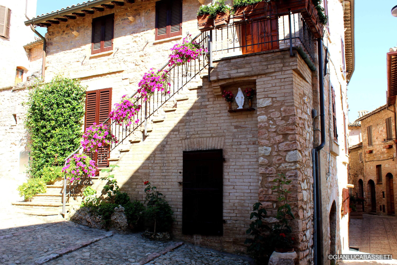 schody we włoszech kwiaty