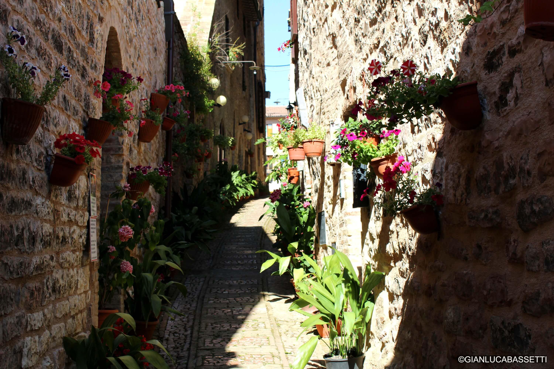 uliczka z kwiatami włochy