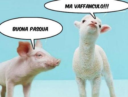 przekleństwa i wulgaryzmy w języku włoskim